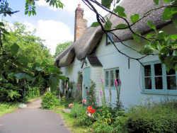 A picture for Collingbourne-Ducis